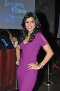 Pallavi Sharda profile picture