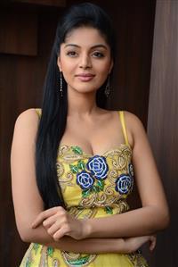 Sanam Shetty profile picture