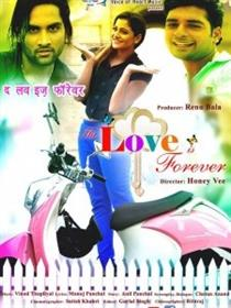 The Love is Forever Movie Poster